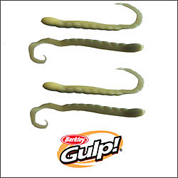 Gulp!® Turtle Back Worm